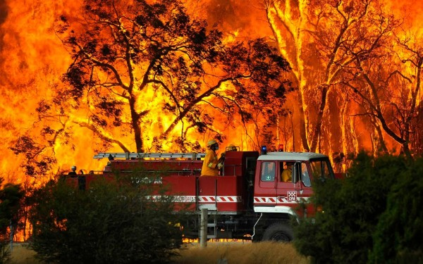 Your patio cover or deck might be in a bushfire zone… so what next?